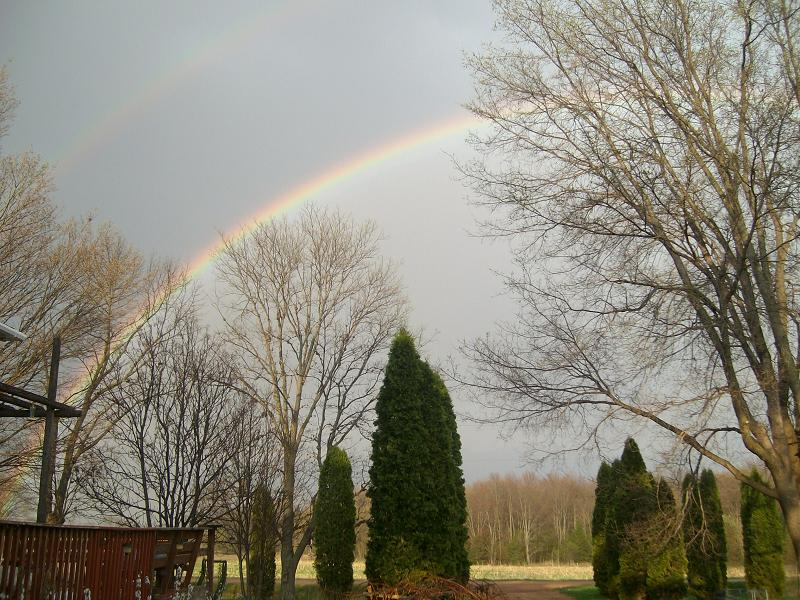 rainbow (125k image)